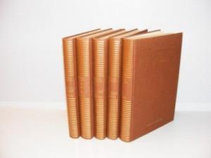 Borisav Stanković 5 knjiga iz Sabranih dela